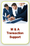 M & A transaction report